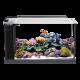 Аквариуми за морска акваристика