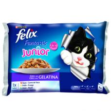 Felix Fantastic Junior Pouch с пиле